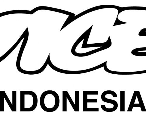 Vice-Indo-01 (1)
